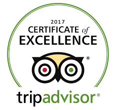 2017 TripAdvisor Certificate of Excellence Skydive Auckland
